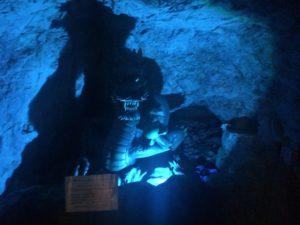 江の島岩屋龍