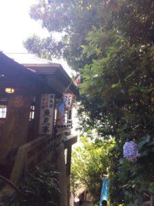 江の島魚見亭